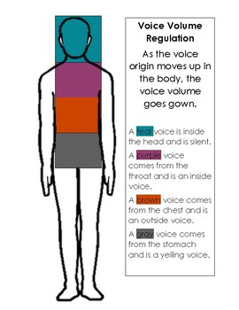 Voice Volume Regulation Visual