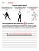 Volleyball Assessment