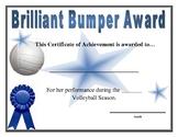 Volleyball Awards --PDF