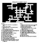 Volleyball Crossword and Word Search with KEYS Puzzle