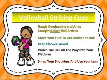Volleyball Striking Cues Poter