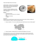 Volume and Surface Area of a Donut Lab