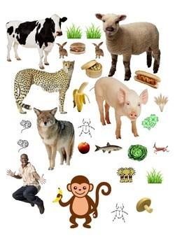 Vores: Is it a Carnivore, Omnivore, or Herbivore? Science Lesson Plan