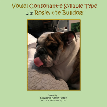 Vowel Consonant E Syllable (VCe) Type with Rosie the Bulldog!