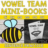 Mini-Books: Vowel Teams