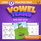 Vowel Team Multisensory Word Work Packet for Long O