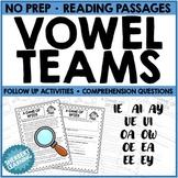Vowel Team Reading Stories - ie, ai, ay, ue, ui, oa, ow, o