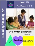 Vowel Teams - Decodable Stories, Sentences, Word Cards (Long A, E, and I) (OG)