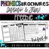Vowel Teams Fluency Passage and Word Work FREEBIE - Phonics Brochures