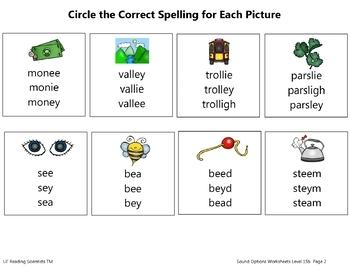 Vowel Teams - Sound Options Kit (Spelling Options for 31 Vowel Teams) (OG)