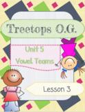 Vowel Teams oa, oe: Orton Gillingham Complete Curriculum Lesson 3