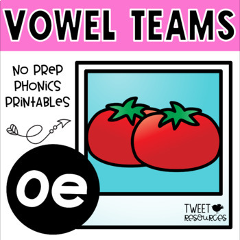 Vowel Teams 'oe' No Prep Phonics Printables