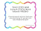 Vowel Word Search FREEBIE!