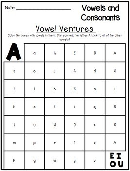 Vowels and Consonants Word Work