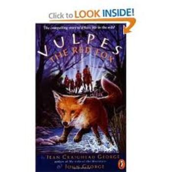 Vulpes End of Book Test
