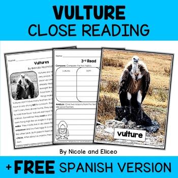 Close Reading Passage - Vulture Activities