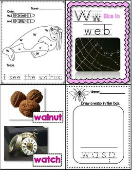 W Like In Wombat (Letter W Unit Using Real Photos!)
