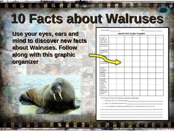 WALRUS: 10 facts. Fun, visual, engaging PPT (w links & fre