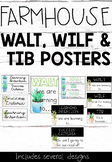 WALT, WILF and TIB posters PLUS Learning Intentions and Su