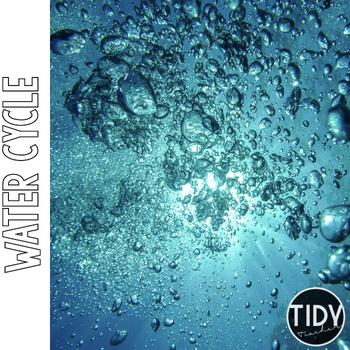 WATER CYCLE Online Scavenger Hunt PebbleGo Activity Sheet