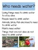 WATER Science & Literacy Centers & Activities for Preschool - an Introduction