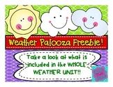 Weather Unit Freebie