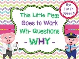 WH- Question Activity Pack for WHY