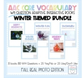 WH Question Interactive and Adaptive Books - Winter