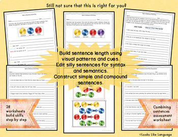 Sentence Building Picture Activities Spin a Sentence Game