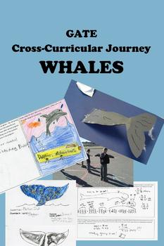 WHALES & Dolphins -- Cross-Curricular Adventure Upper Elementary and GATE