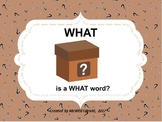 WHAT Is A What Word?
