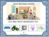 What Belongs Where Cut and Paste Activities, Category Sorting, Kindergarten