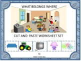 What Belongs Where Cut and Paste Activities, Category Sorting, Kindergarten