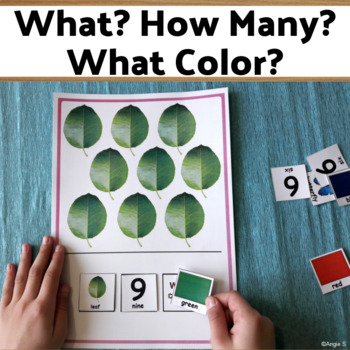 WHAT? HOW MANY? WHAT COLOR? Adapted Book for Autism - Book 2