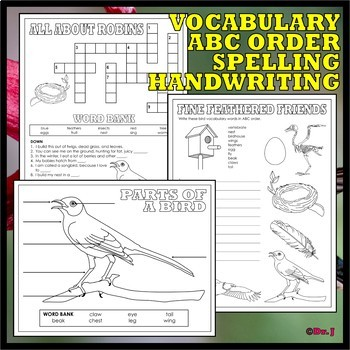 WHAT IS A BIRD? Basic Skills Activity Set