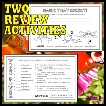 Animal Classes for K-3: WHAT IS AN INSECT? (Cut-and-Glue Science)