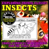 Animal Classes for Grades 1-3: WHAT IS AN INSECT? (Cut-and-Glue Science)