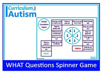 WHAT Questions Game Autism Special Education