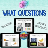 WHAT Questions with Real Picture Choices | Speech Therapy