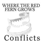 WHERE THE RED FERN GROWS Conflict Graphic Organizer - 6 Ty