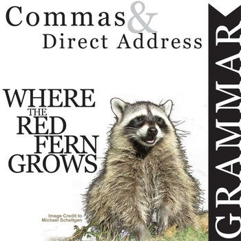 WHERE THE RED FERN GROWS Grammar Commas Direct Address