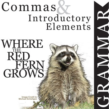 WHERE THE RED FERN GROWS Grammar Commas Introductory Elements