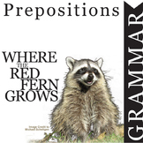 WHERE THE RED FERN GROWS Grammar Prepositions