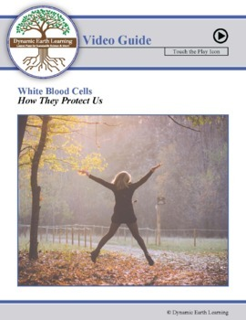WHITE BLOOD CELLS: FuseSchool Biology Video Guide