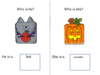 WHO AM I?  Interactive Book in Color & B/W  Descriptive lang/ Pronouns/Who Ques