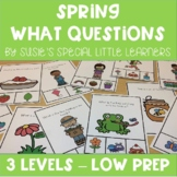 SPRING VISUAL WHAT QUESTIONS  FOR AUTISM AND SPECIAL EDUCATION