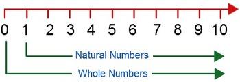 WHOLE NUMBERS WORKSHEET