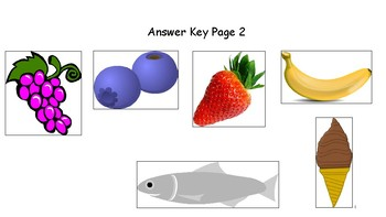 """WHY Questions and """"BECAUSE""""-  Bunnies, Healthy Food, Colors  (In Color and B/W)"""