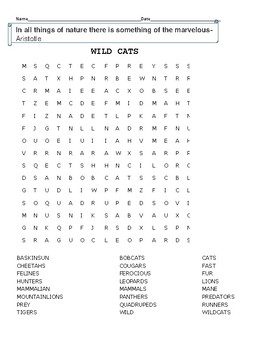 WILD CATS: WORD SEARCH