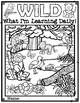 WILD Student Organization Rainforest Theme Binder Covers